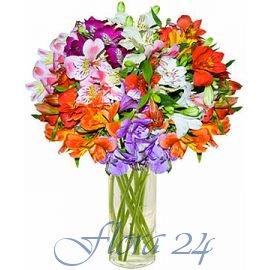 Доставка цветов новоград-волынский оптом купить исскуственные цветы